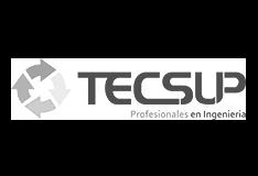 tecsup-1
